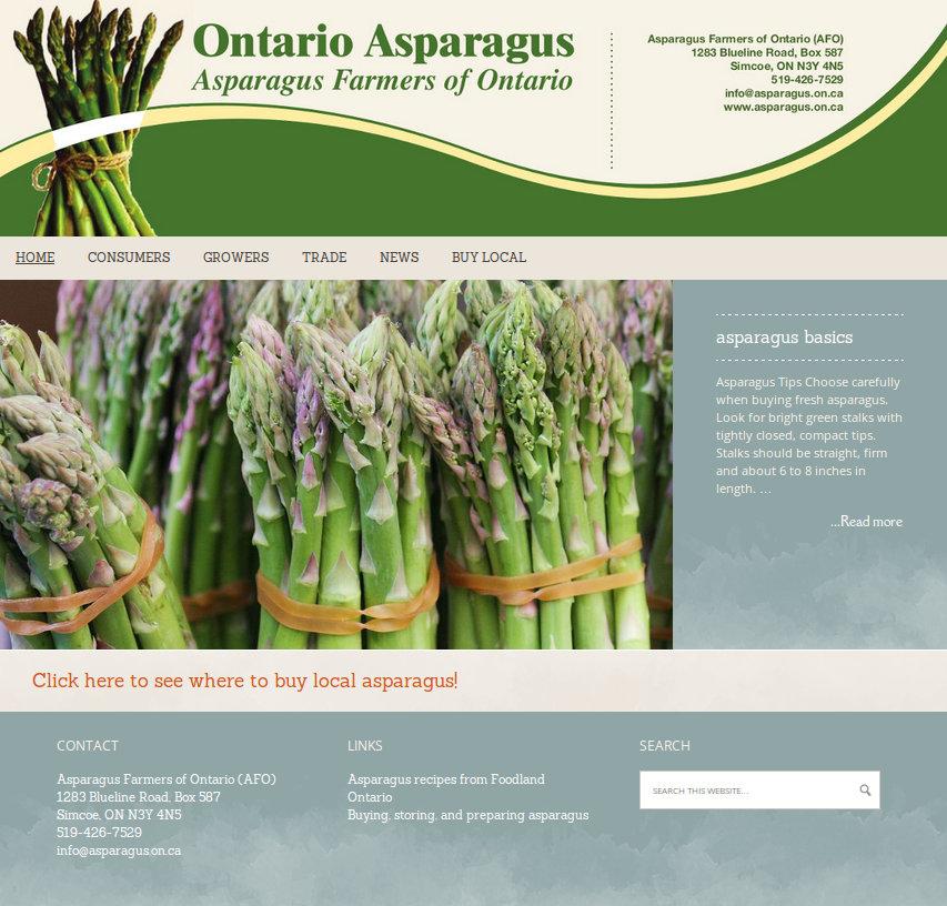 asparagus large